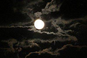 秋の月をながめてみませんか?